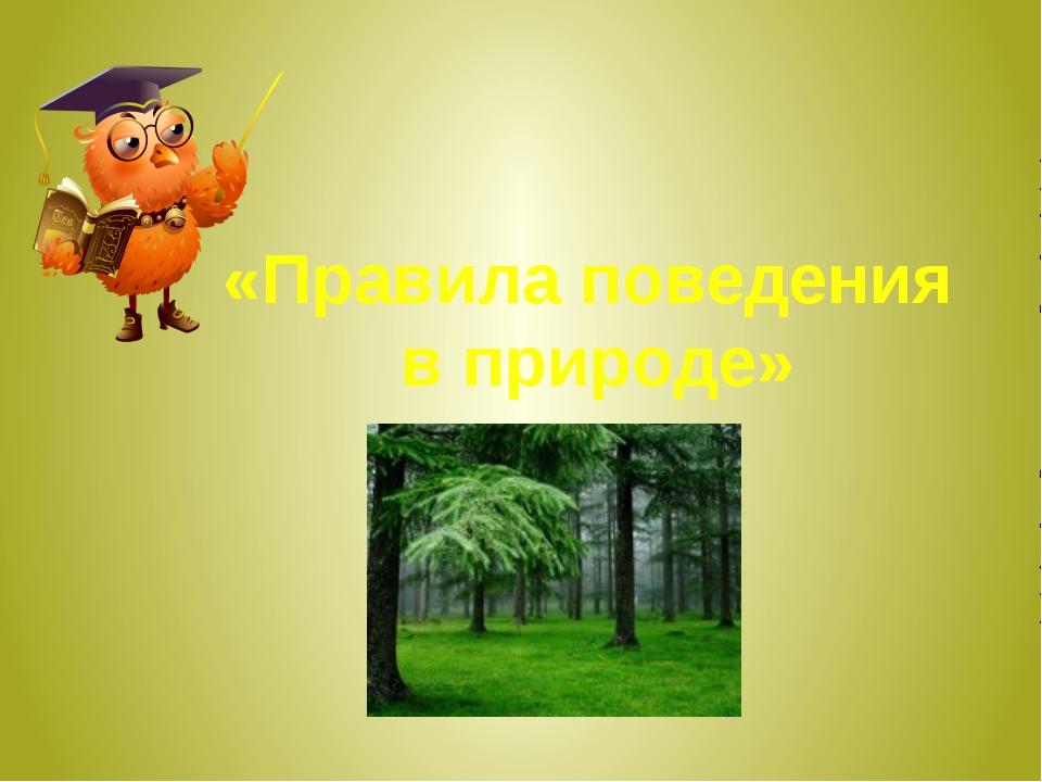 «Правила поведения в природе»