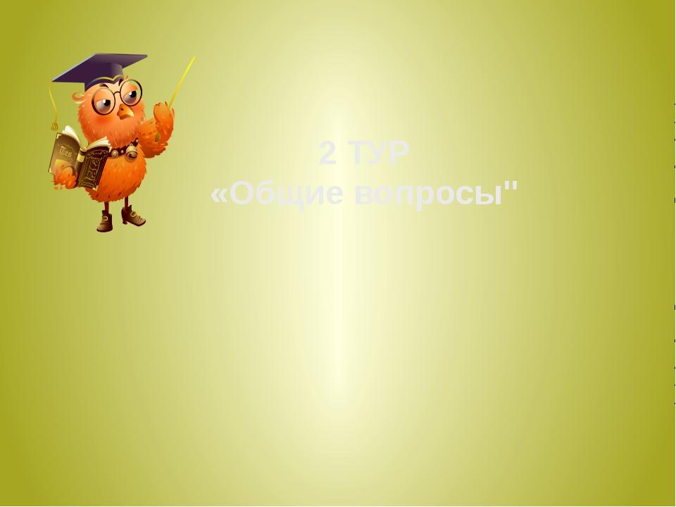"""2 ТУР «Общие вопросы"""""""