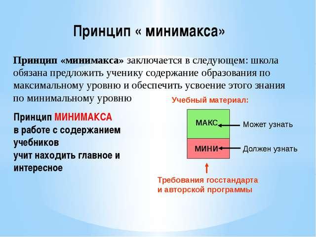 Принцип «минимакса» заключается в следующем: школа обязана предложить ученику...