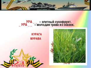 _ УРА _ _ – элитный сухофрукт. КУРАГА _ УРА _ _ – молодая трава из сказок