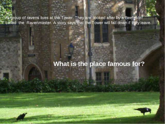 A. group of ravens lives at the Tower. They are looked after by a Beefeater c...