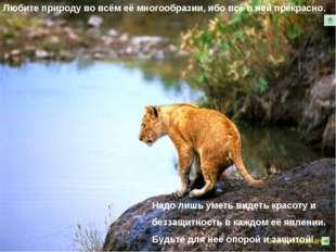 Любите природу во всём её многообразии, ибо всё в ней прекрасно.. Надо лишь у