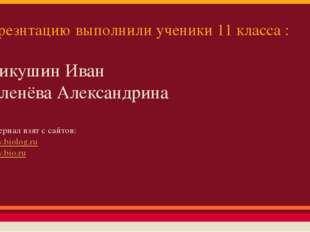 Презнтацию выполнили ученики 11 класса : Микушин Иван Зеленёва Александрина М