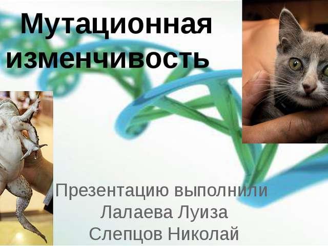 Презентацию выполнили Лалаева Луиза Слепцов Николай Мутационная изменчивость