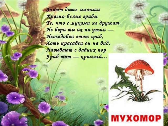 Знают даже малыши Красно-белые грибы Те, что с мухами не дружат. Не бери ты и...