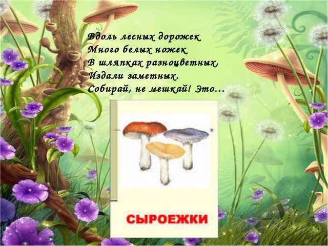 Вдоль лесных дорожек Много белых ножек В шляпках разноцветных, Издали заметны...