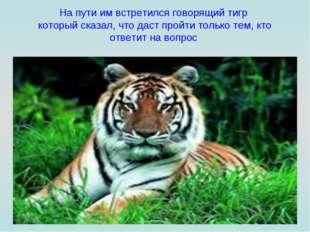 На пути им встретился говорящий тигр который сказал, что даст пройти только т