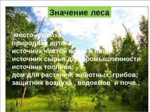 место отдыха природная аптека; источник чистой воды и пищи; источник сырья д