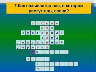 7.Как называется лес, в котором растут ель, сосна? ь л о б о с и м я н а р х
