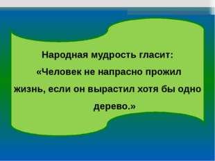 Народная мудрость гласит: «Человек не напрасно прожил жизнь, если он вырастил