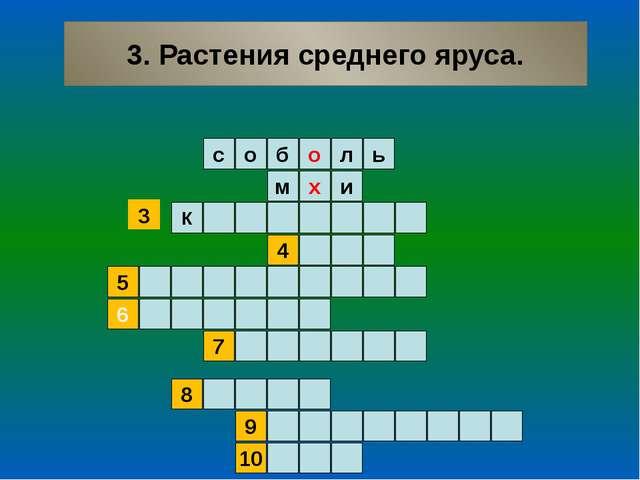 3. Растения среднего яруса. ь л о б о с и м х 4 К 5 6 7 9 8 10 3