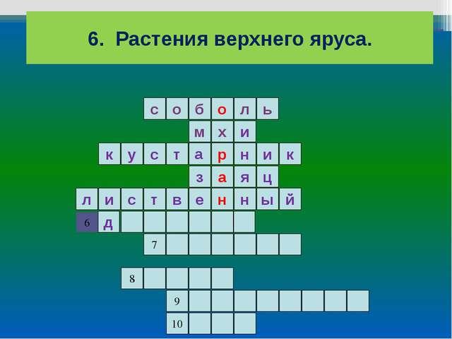 6. Растения верхнего яруса. ь л о б о с и м н а р х е к ц я з к у и н с т й л...