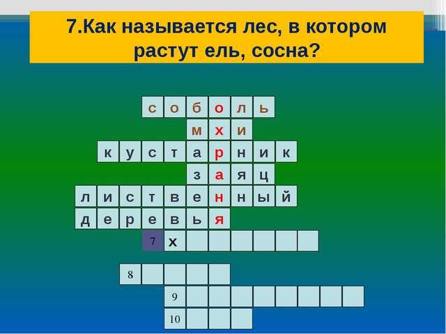 7.Как называется лес, в котором растут ель, сосна? ь л о б о с и м я н а р х...