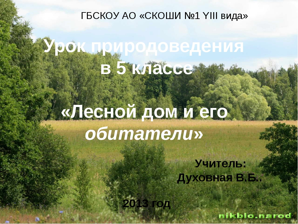ГБСКОУ АО «СКОШИ №1 YIIIвида» Урок природоведения в 5 классе «Лесной дом и ег...