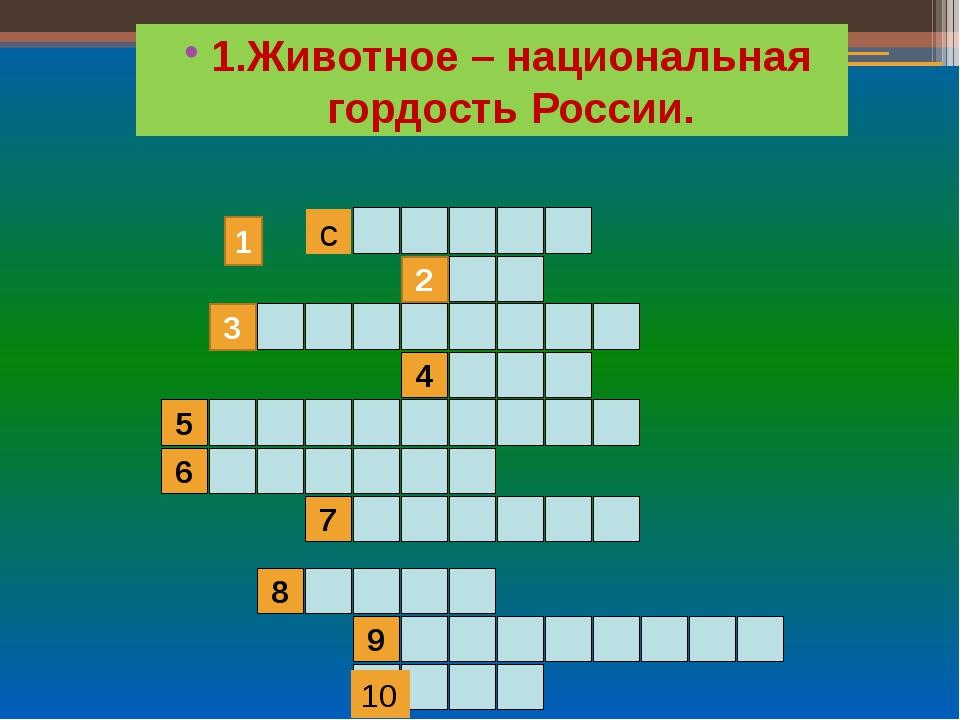 1.Животное – национальная гордость России. 2 4 3 5 6 7 9 8 с 10 1