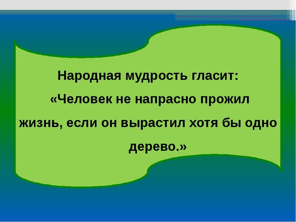 Народная мудрость гласит: «Человек не напрасно прожил жизнь, если он вырастил...