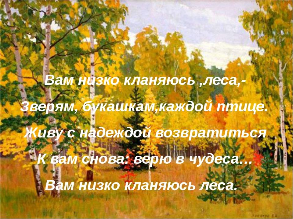 Вам низко кланяюсь ,леса,- Зверям, букашкам,каждой птице. Живу с надеждой воз...