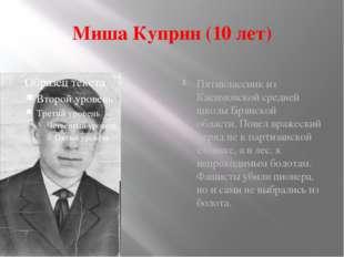 Миша Куприн (10 лет) Пятиклассник из Касимовской средней школы Брянской облас