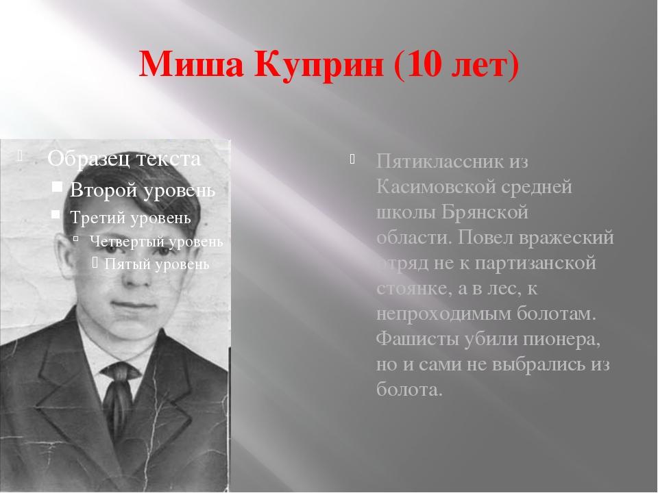 Миша Куприн (10 лет) Пятиклассник из Касимовской средней школы Брянской облас...
