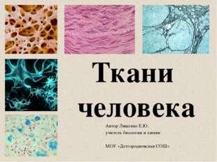 Автор Лященко Е.Ю. учитель биологии и химии МОУ «Детгородковская СОШ» Ткани ч