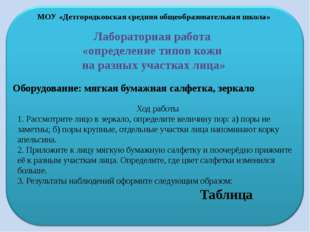 МОУ «Детгородковская средняя общеобразовательная школа» Лабораторная работа «