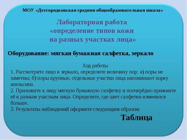 МОУ «Детгородковская средняя общеобразовательная школа» Лабораторная работа «...