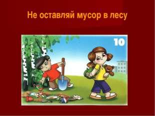 Не оставляй мусор в лесу