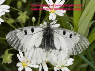В зависимости от расположения пятен, выделяют более 600 форм этого вида