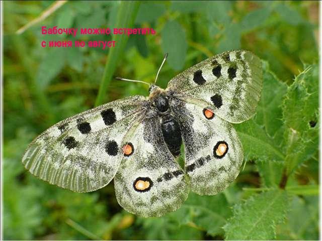 Бабочку можно встретить с июня по август