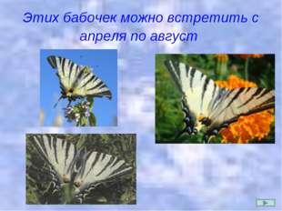 Этих бабочек можно встретить с апреля по август