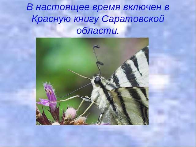 В настоящее время включен в Красную книгу Саратовской области.