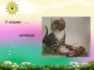 У кошки - … котёнок