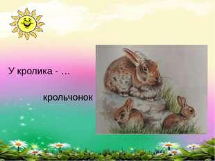 У кролика - … крольчонок