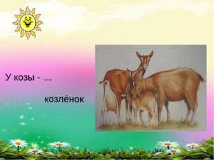 У козы - … козлёнок