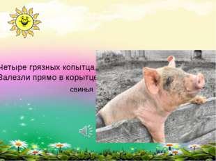 Четыре грязных копытца, Залезли прямо в корытце свинья