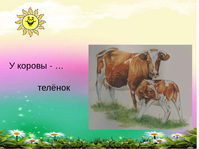У коровы - … телёнок
