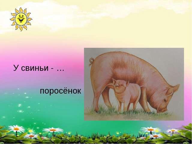 У свиньи - … поросёнок