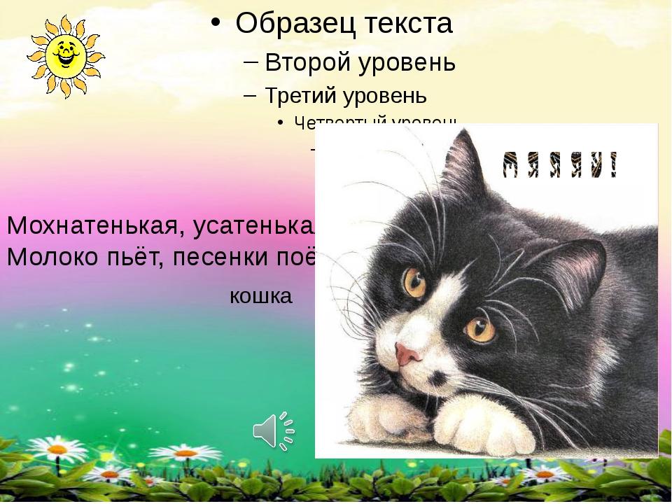 Мохнатенькая, усатенькая Молоко пьёт, песенки поёт кошка