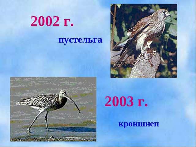 2002 г. 2003 г. пустельга кроншнеп