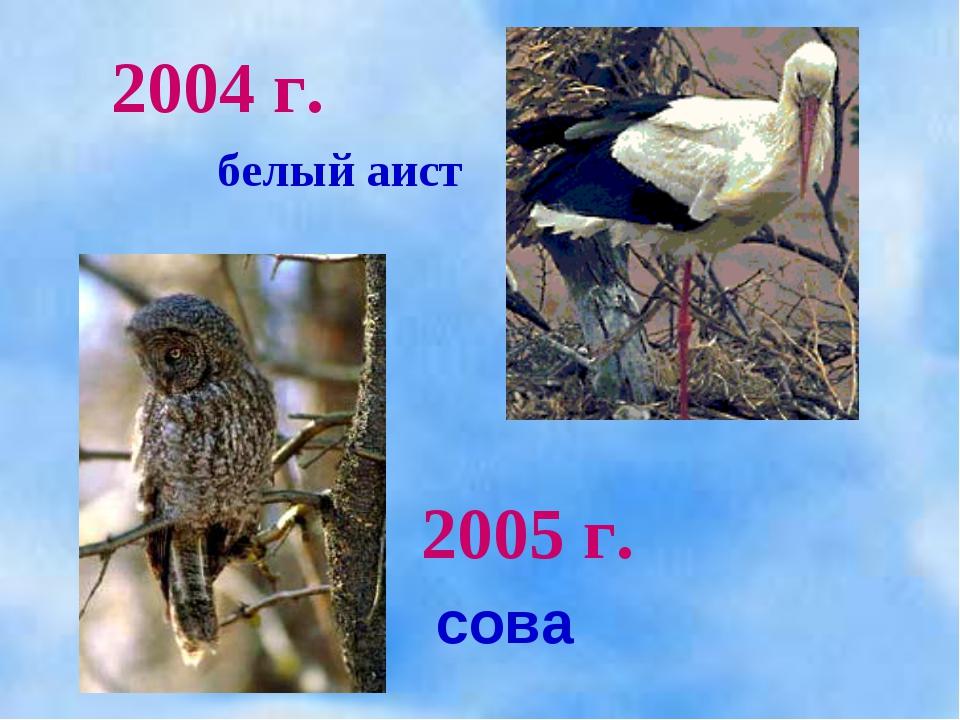 2005 г. 2004 г. белый аист сова