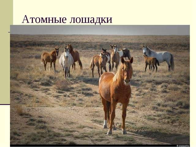 * Атомные лошадки