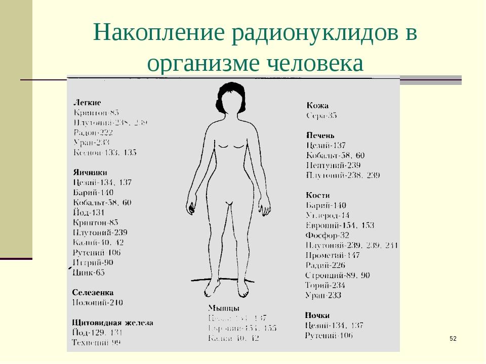 * Накопление радионуклидов в организме человека