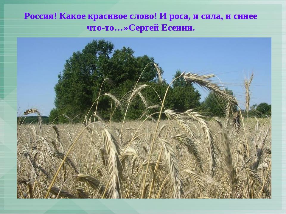 Россия! Какое красивое слово! И роса, и сила, и синее что-то…»Сергей Есенин.
