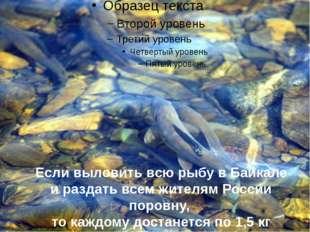 Если выловить всю рыбу в Байкале и раздать всем жителям России поровну, то ка