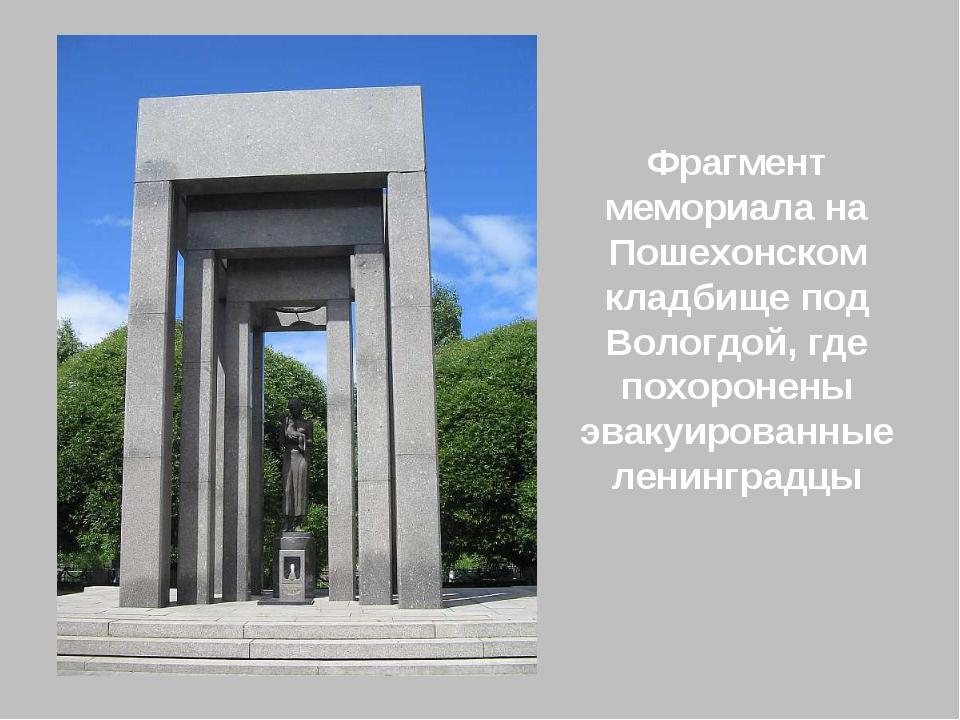 Фрагмент мемориала на Пошехонском кладбище под Вологдой, где похоронены эваку...