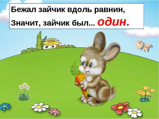 Бежал зайчик вдоль равнин, Значит, зайчик был... один.