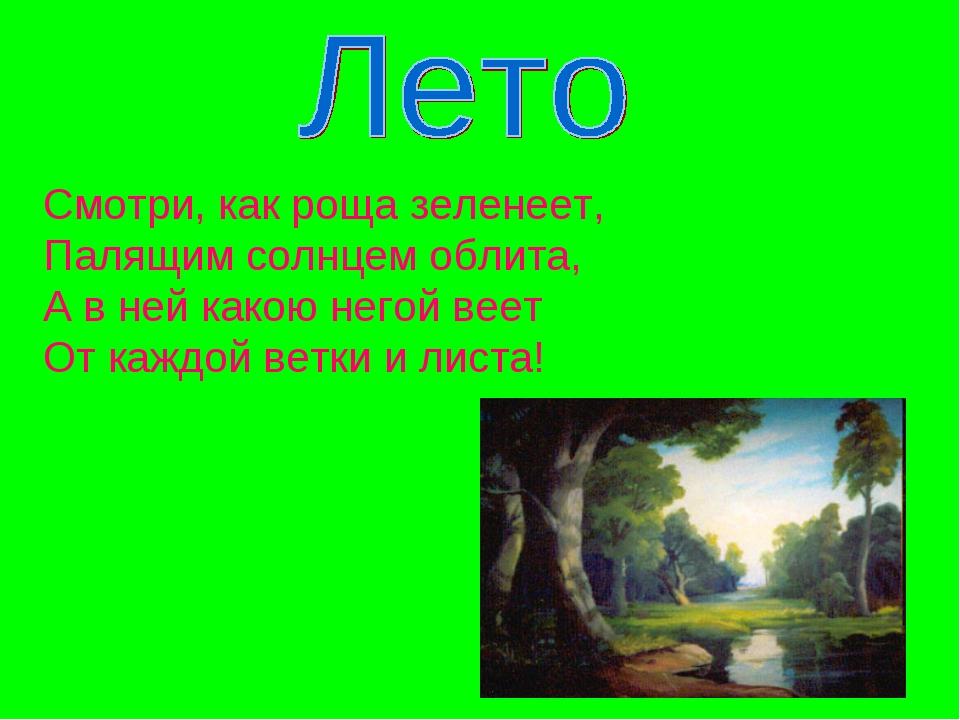 Смотри, как роща зеленеет, Палящим солнцем облита, А в ней какою негой веет О...
