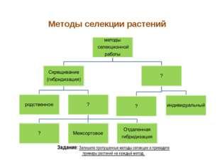 Методы селекции растений Задание: Запишите пропущенные методы селекции и прив
