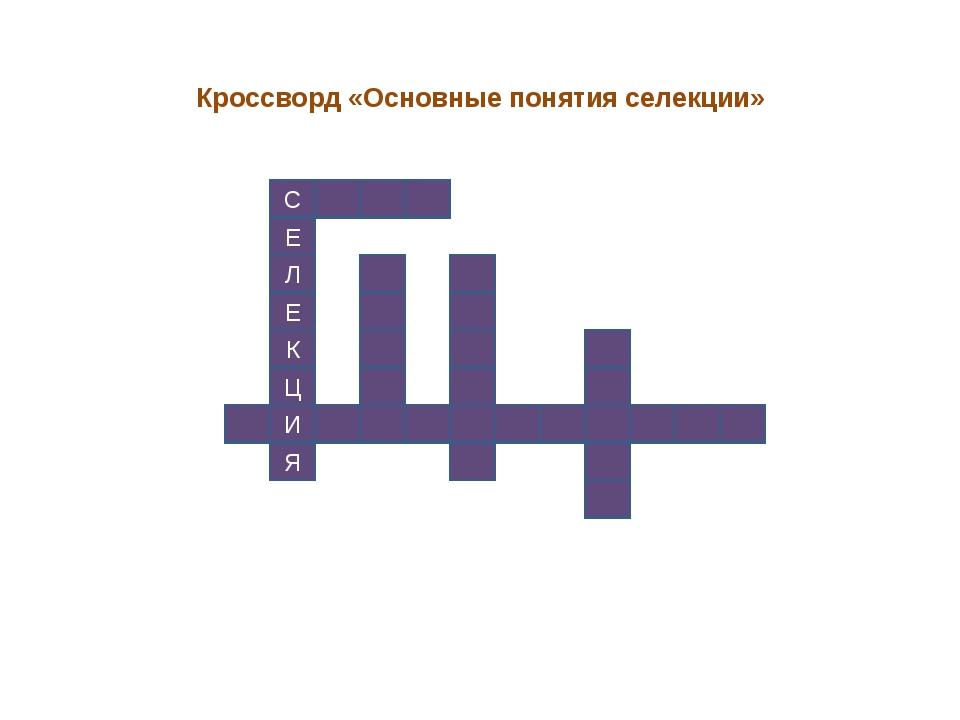 С Е Л Е К Ц И Я Кроссворд «Основные понятия селекции»