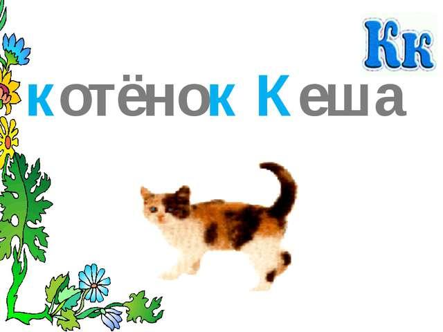 кот котик котёнок